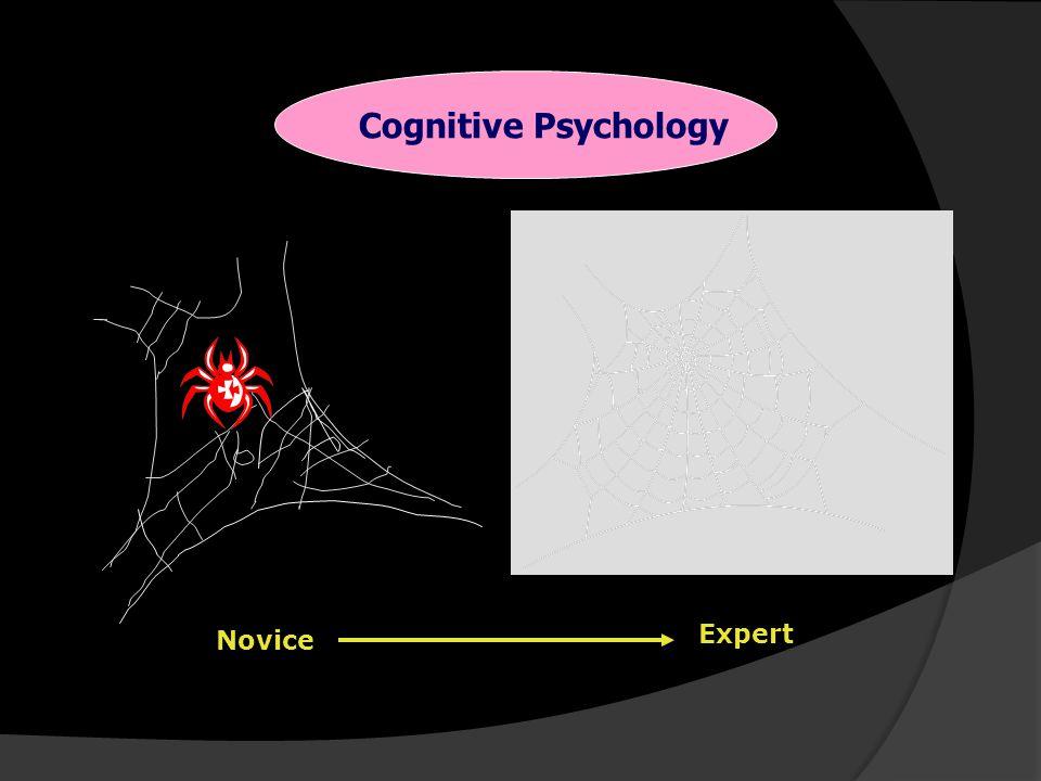 Cognitive Psychology Expert Novice