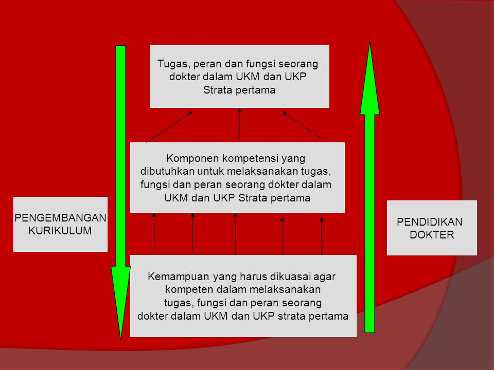 Tugas, peran dan fungsi seorang dokter dalam UKM dan UKP