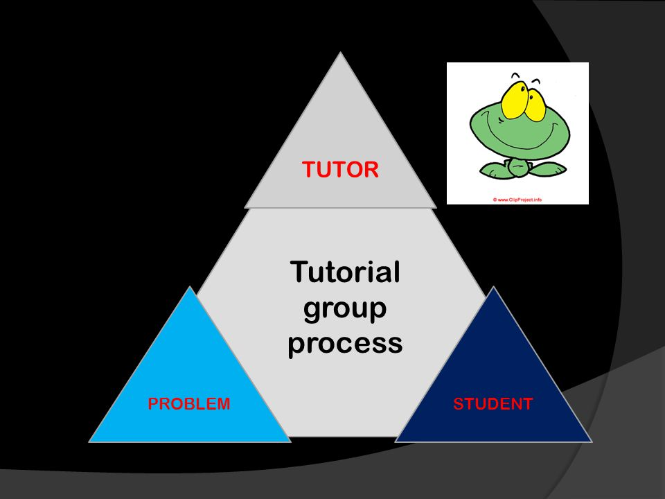 Tutorial group process