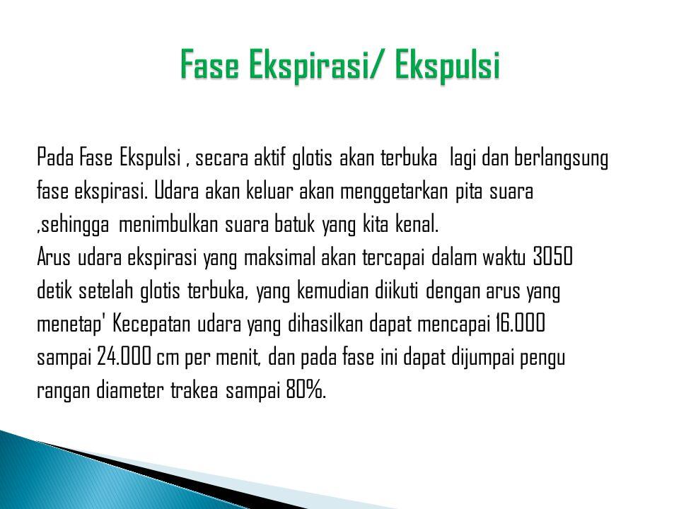 Fase Ekspirasi/ Ekspulsi