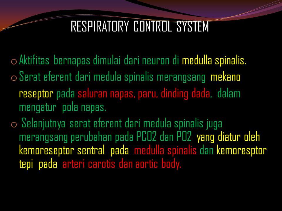 RESPIRATORY CONTROL SYSTEM