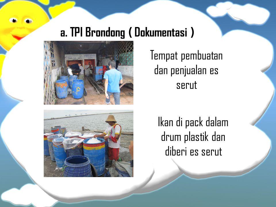a. TPI Brondong ( Dokumentasi )