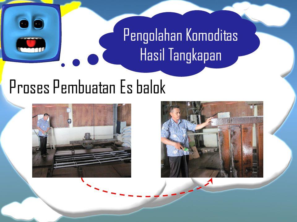 Proses Pembuatan Es balok