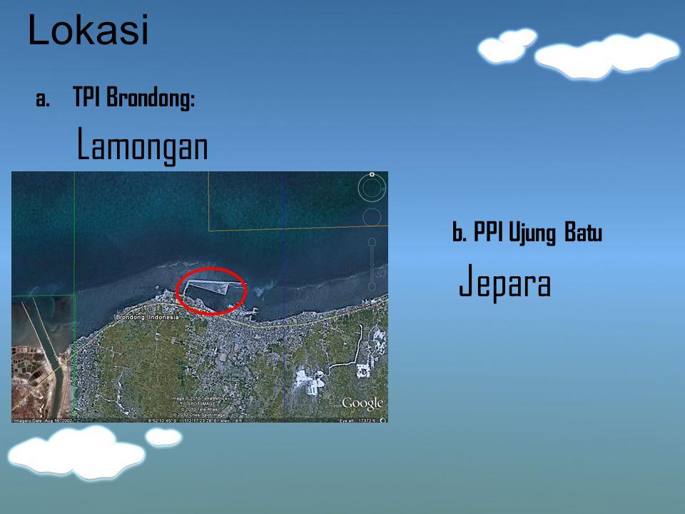 Lokasi a. TPI Brondong: Lamongan b. PPI Ujung Batu Jepara