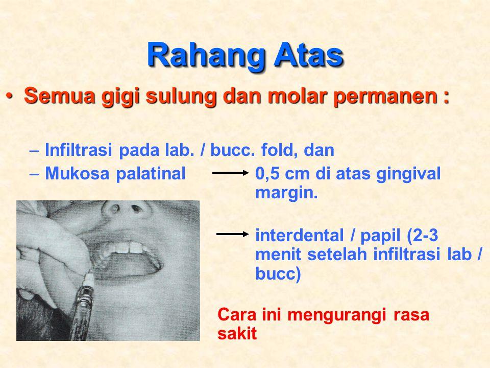 Rahang Atas Semua gigi sulung dan molar permanen :