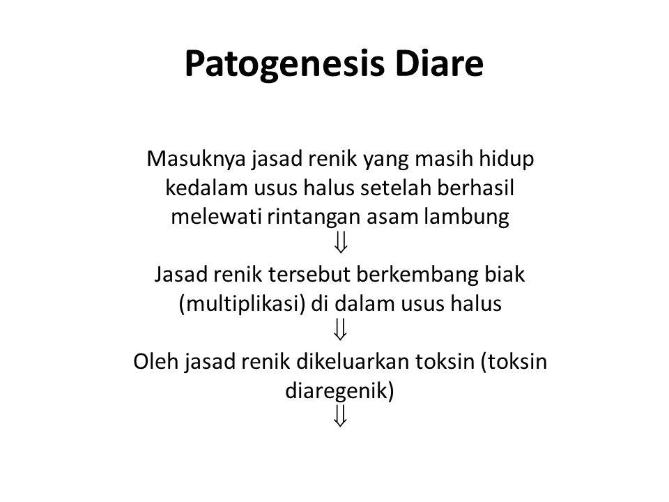 Patogenesis Diare