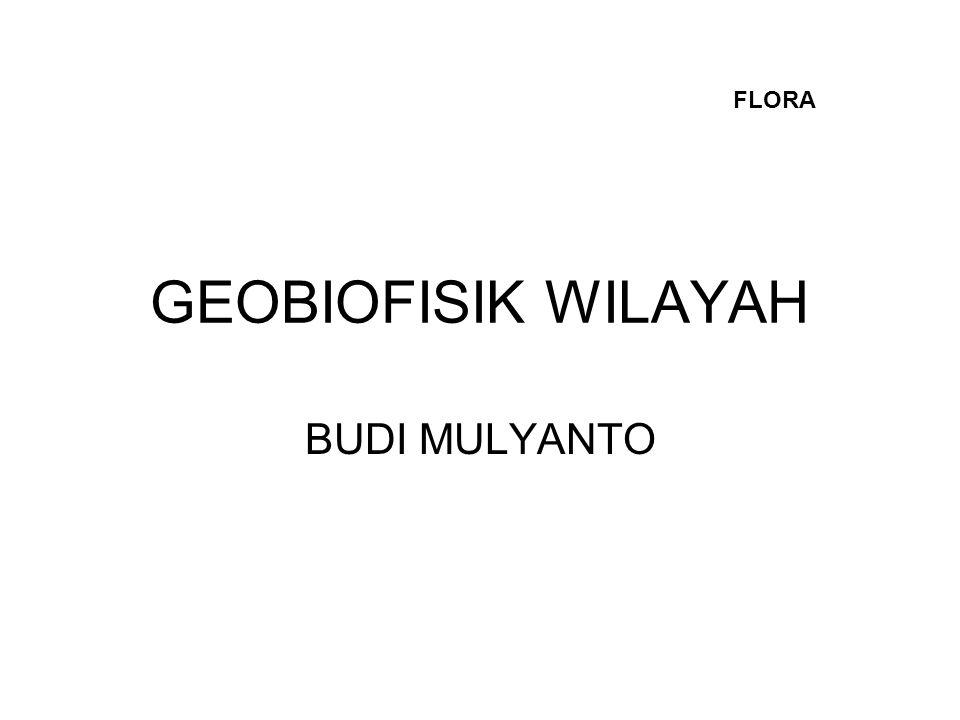 FLORA GEOBIOFISIK WILAYAH BUDI MULYANTO