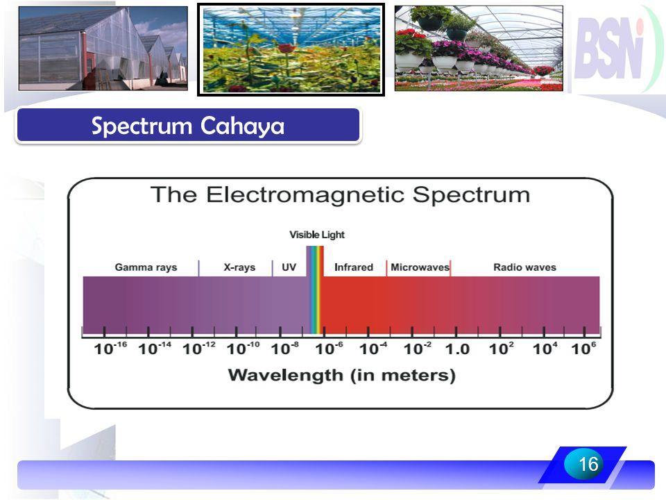 Spectrum Cahaya 16