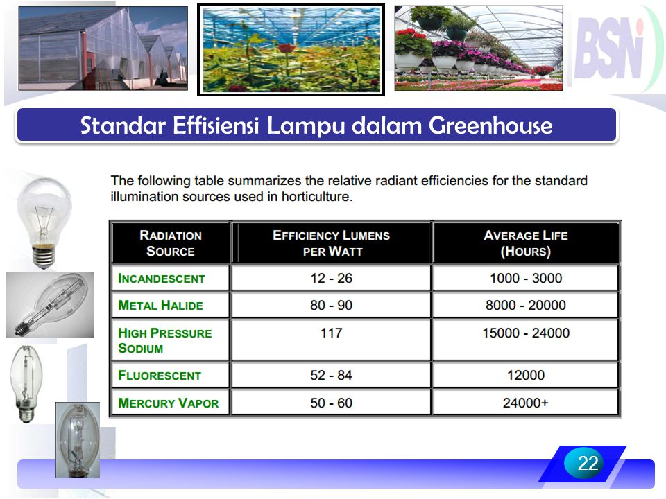 Standar Effisiensi Lampu dalam Greenhouse