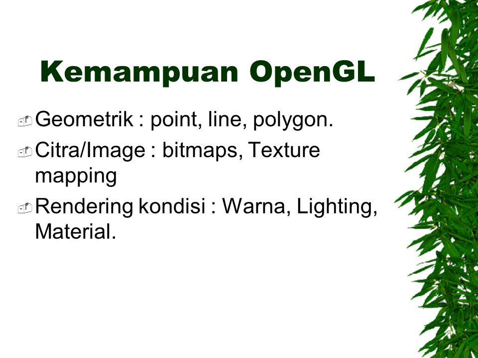 Kemampuan OpenGL Geometrik : point, line, polygon.