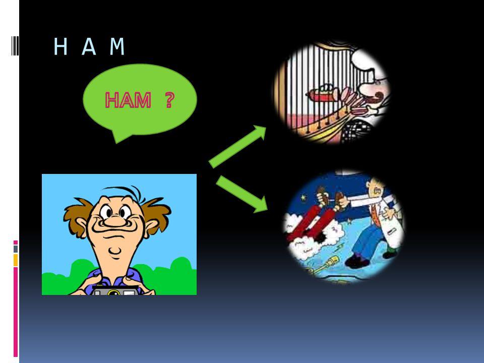 H A M HAM