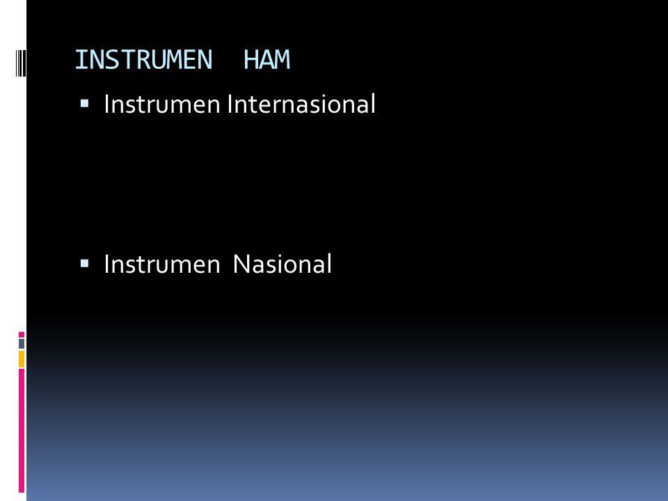 INSTRUMEN HAM Instrumen Internasional Instrumen Nasional