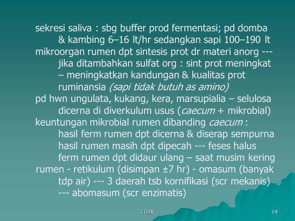 keuntungan mikrobial rumen dibanding caecum :