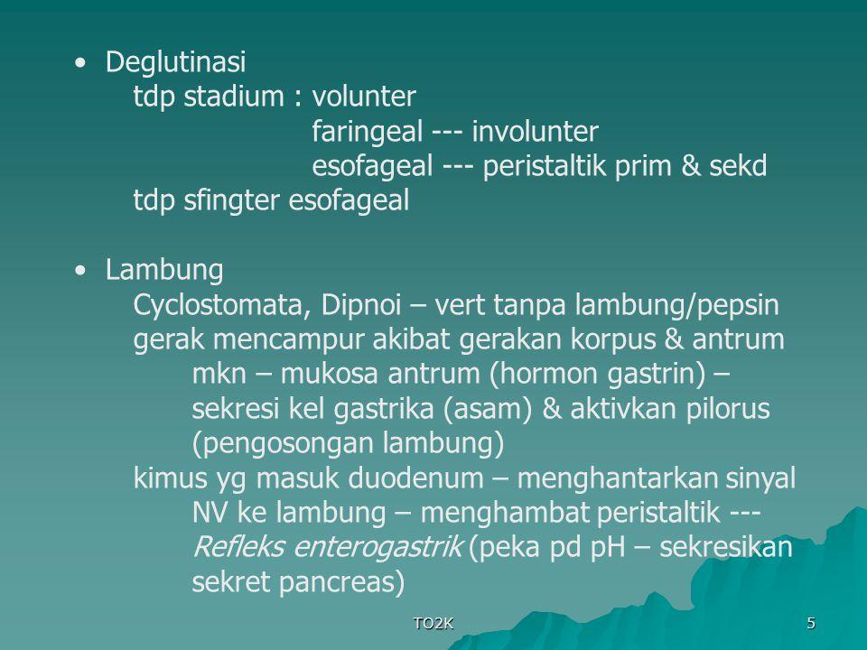 faringeal --- involunter esofageal --- peristaltik prim & sekd