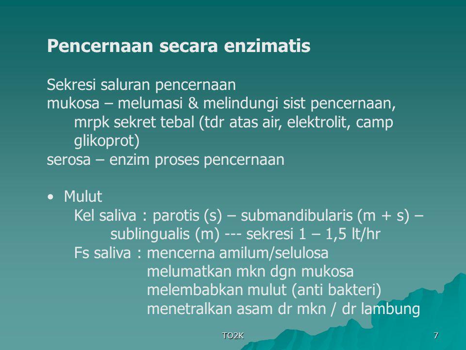 Pencernaan secara enzimatis