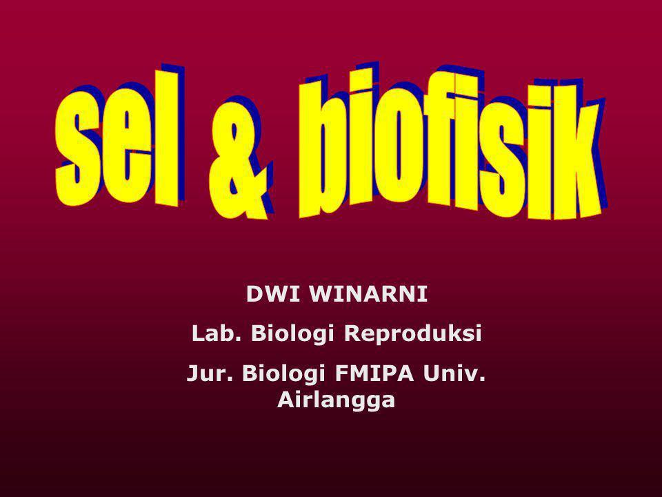 Lab. Biologi Reproduksi Jur. Biologi FMIPA Univ. Airlangga