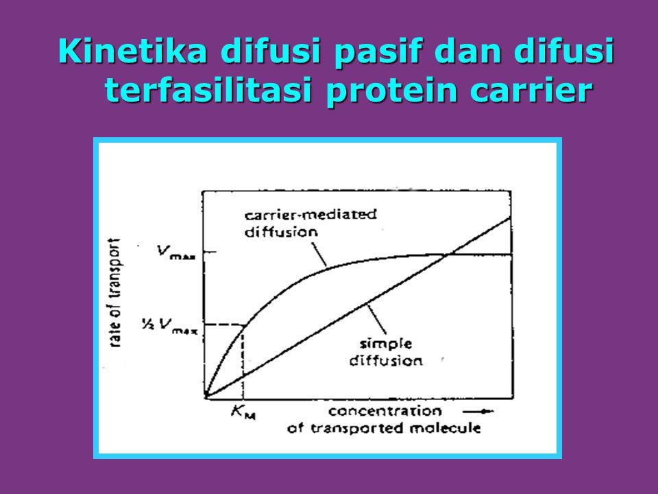 Kinetika difusi pasif dan difusi terfasilitasi protein carrier