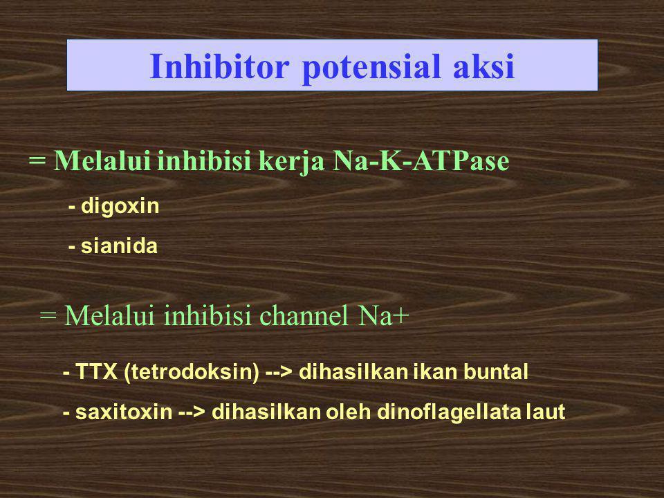 Inhibitor potensial aksi