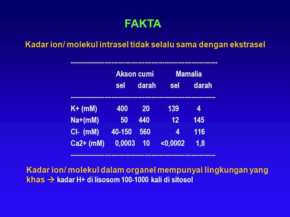 Kadar ion/ molekul intrasel tidak selalu sama dengan ekstrasel