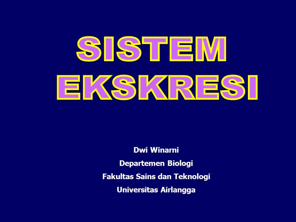 Fakultas Sains dan Teknologi Universitas Airlangga