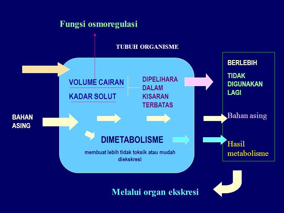 Melalui organ ekskresi