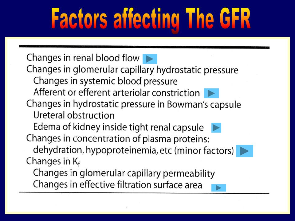 Factors affecting The GFR