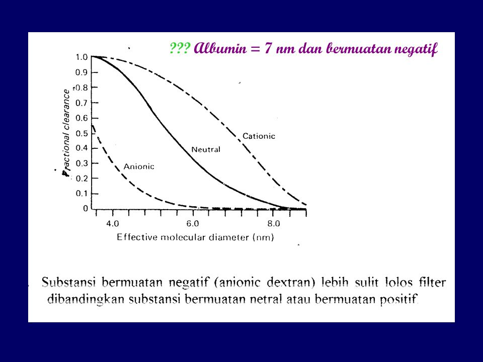 Albumin = 7 nm dan bermuatan negatif