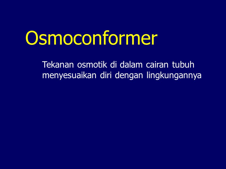 Osmoconformer Tekanan osmotik di dalam cairan tubuh menyesuaikan diri dengan lingkungannya