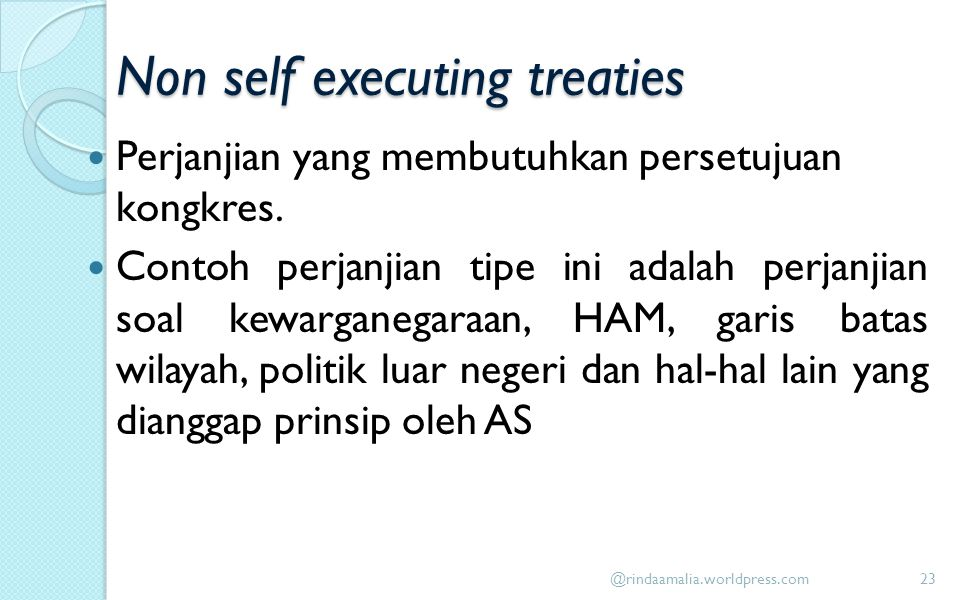 Non self executing treaties
