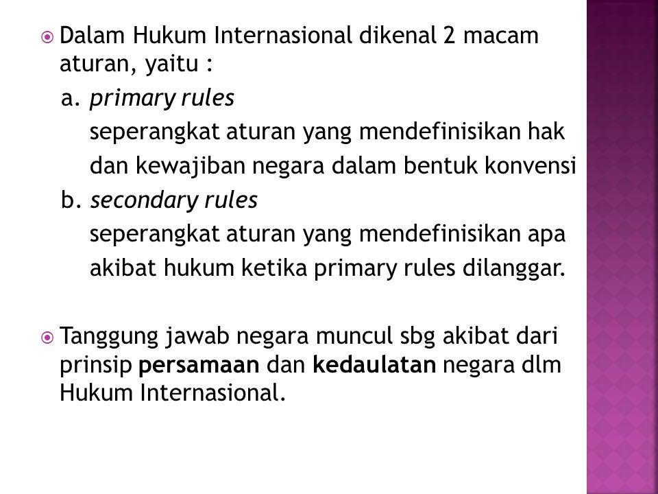 Dalam Hukum Internasional dikenal 2 macam aturan, yaitu :