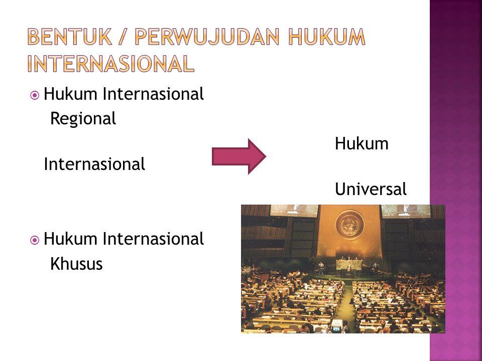 Bentuk / Perwujudan hukum Internasional