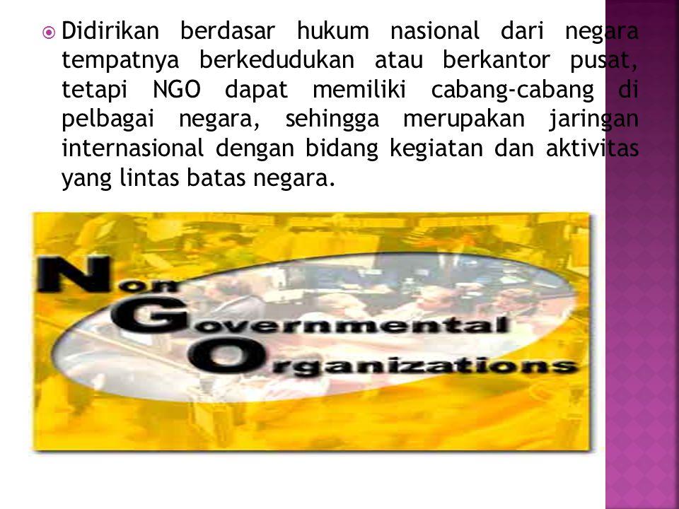 Didirikan berdasar hukum nasional dari negara tempatnya berkedudukan atau berkantor pusat, tetapi NGO dapat memiliki cabang-cabang di pelbagai negara, sehingga merupakan jaringan internasional dengan bidang kegiatan dan aktivitas yang lintas batas negara.