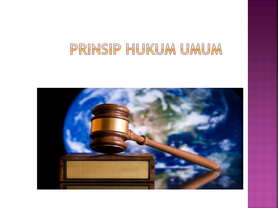Prinsip Hukum Umum