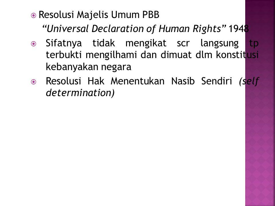 Resolusi Majelis Umum PBB