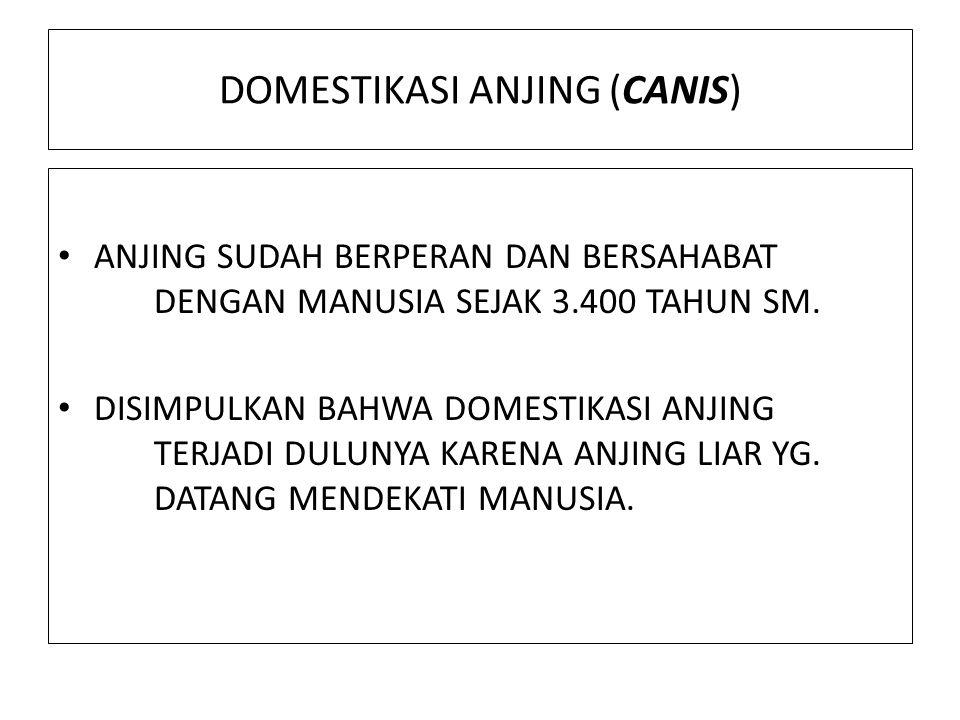 DOMESTIKASI ANJING (CANIS)