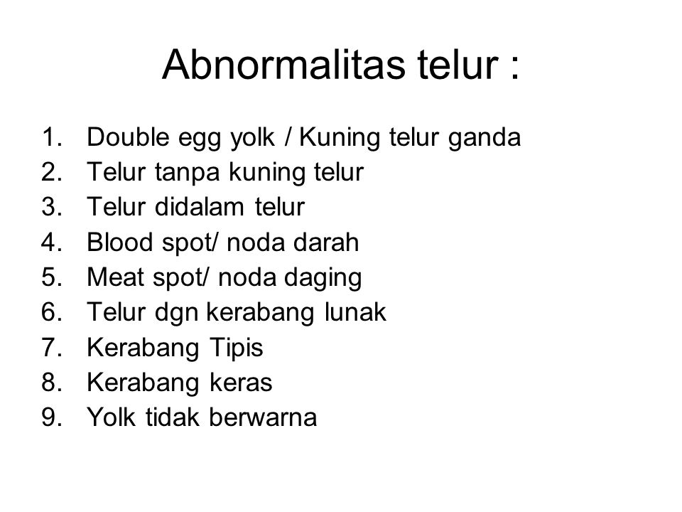 Abnormalitas telur : Double egg yolk / Kuning telur ganda