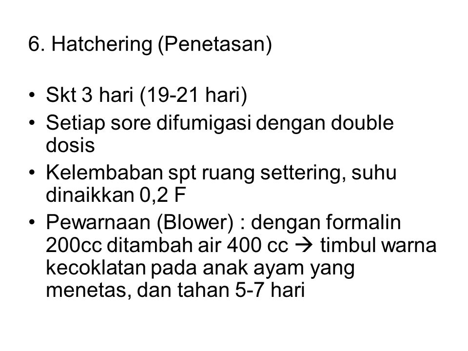 6. Hatchering (Penetasan)