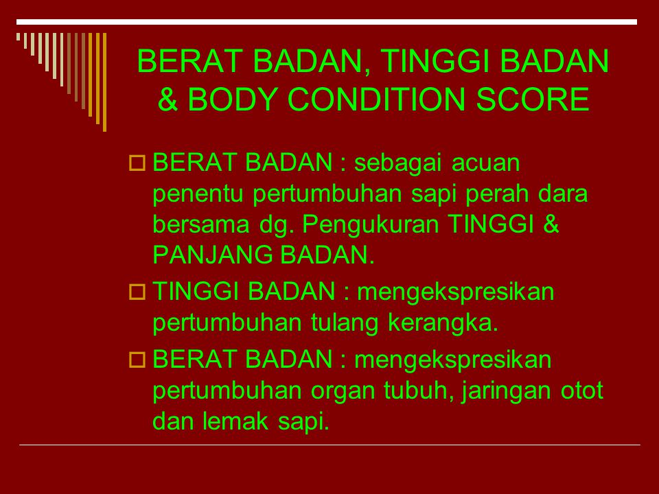BERAT BADAN, TINGGI BADAN & BODY CONDITION SCORE