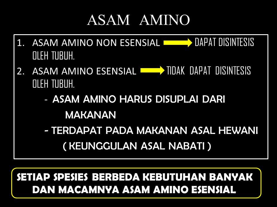 ASAM AMINO ASAM AMINO NON ESENSIAL DAPAT DISINTESIS OLEH TUBUH.
