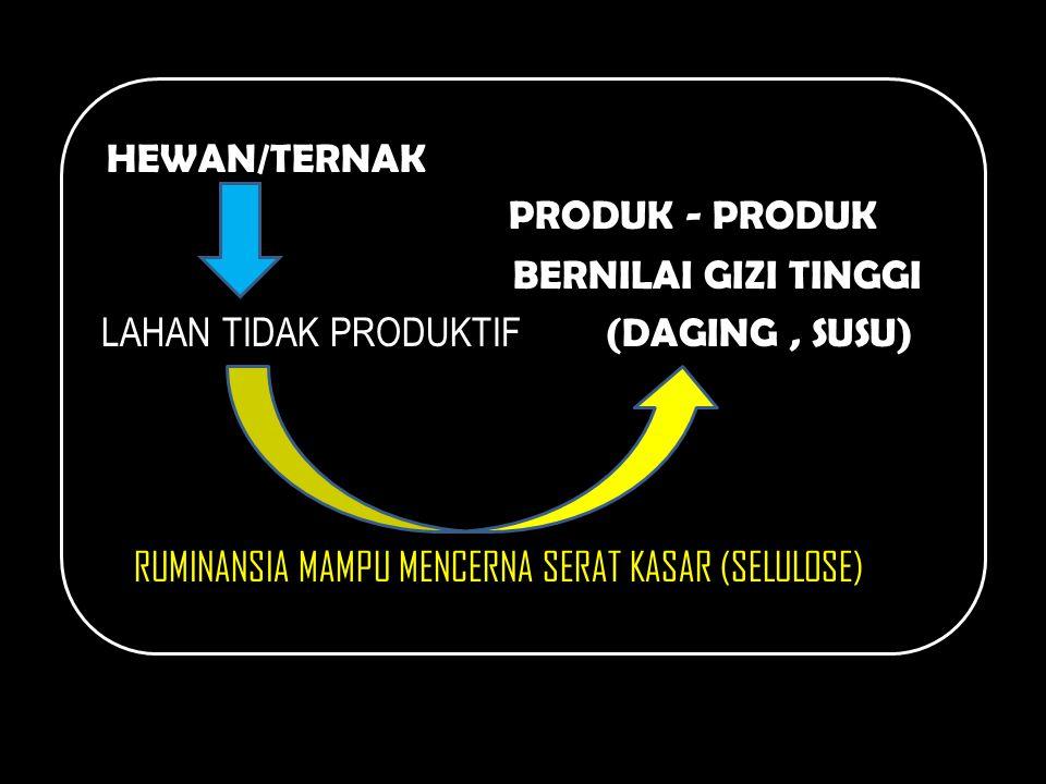 HEWAN/TERNAK PRODUK - PRODUK BERNILAI GIZI TINGGI LAHAN TIDAK PRODUKTIF (DAGING , SUSU) RUMINANSIA MAMPU MENCERNA SERAT KASAR (SELULOSE)