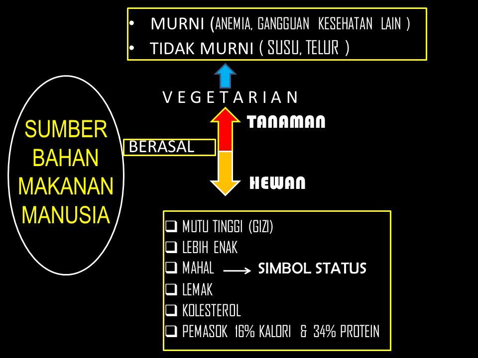 SUMBER BAHAN MAKANAN MANUSIA