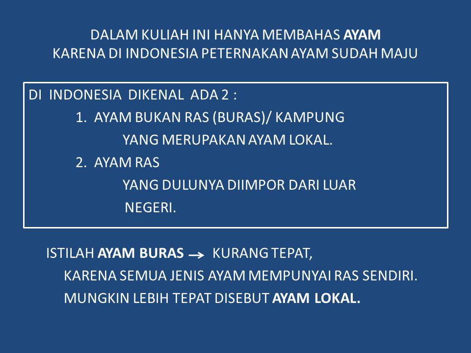 DALAM KULIAH INI HANYA MEMBAHAS AYAM KARENA DI INDONESIA PETERNAKAN AYAM SUDAH MAJU