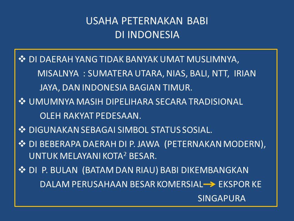 USAHA PETERNAKAN BABI DI INDONESIA