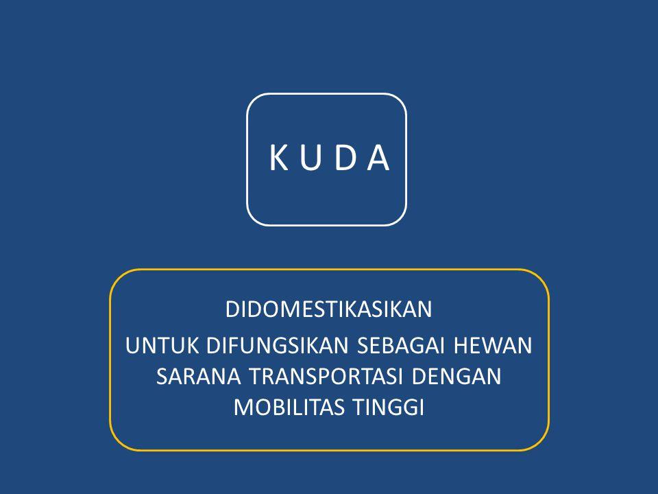 K U D A DIDOMESTIKASIKAN
