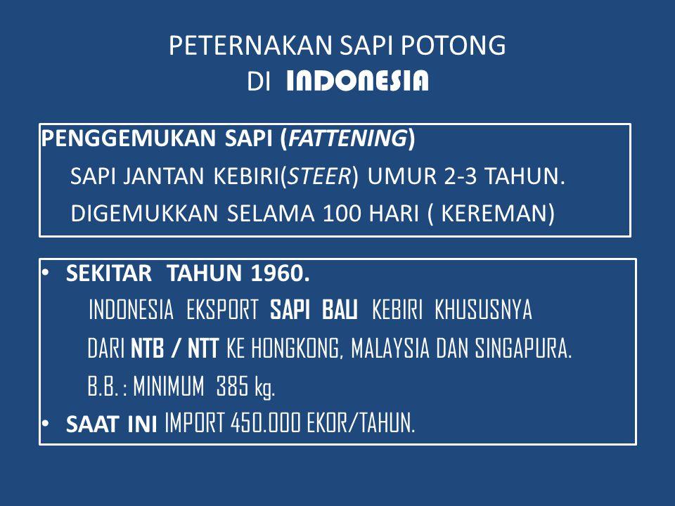 PETERNAKAN SAPI POTONG DI INDONESIA