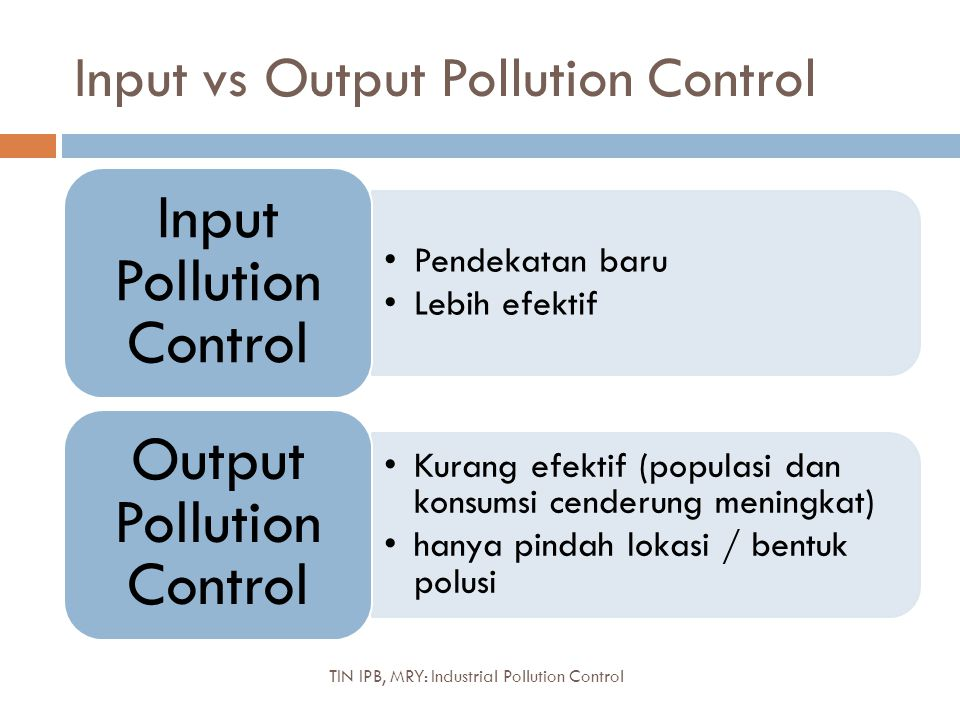 Input vs Output Pollution Control