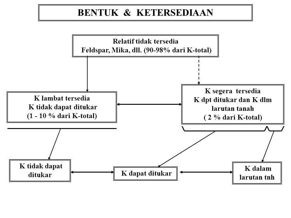 BENTUK & KETERSEDIAAN Relatif tidak tersedia