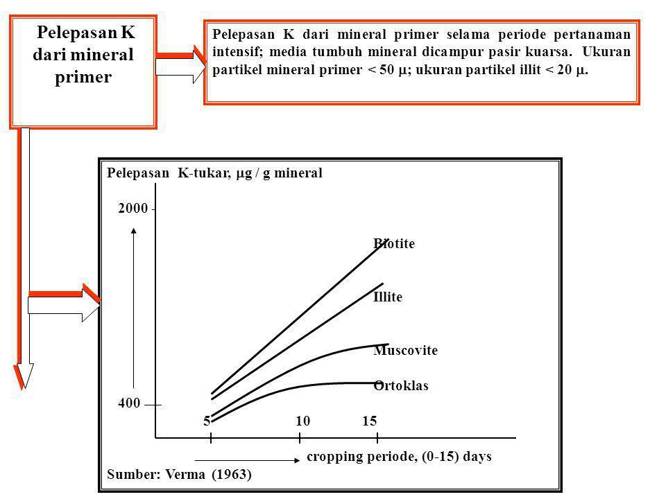 Pelepasan K dari mineral primer