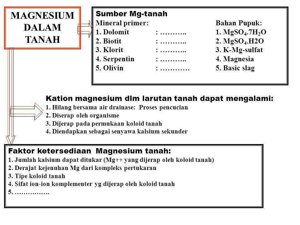 MAGNESIUM DALAM TANAH Sumber Mg-tanah Mineral primer: Bahan Pupuk: