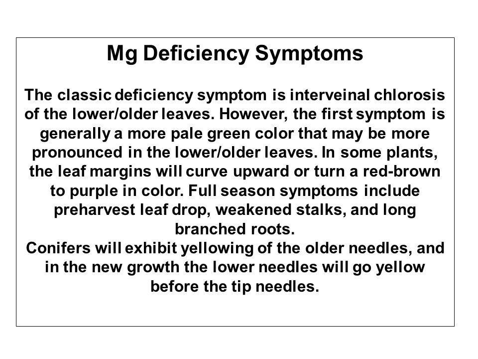 Mg Deficiency Symptoms